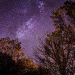 Trees and Stars   Árvores e estrelas