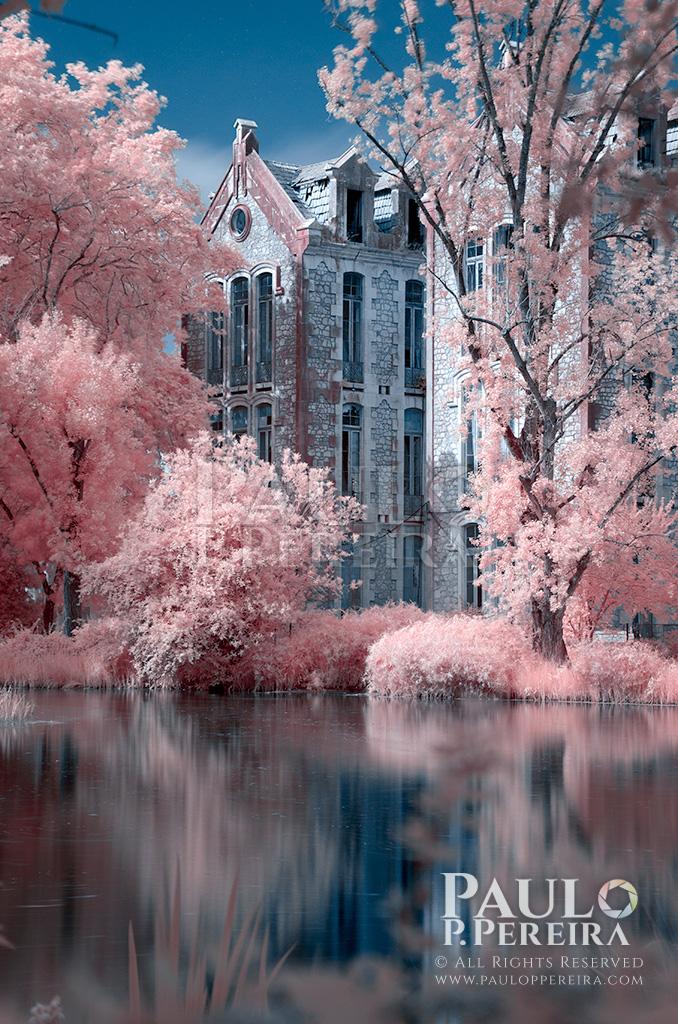 Infrared photography | Fotografia de Infravermelhos