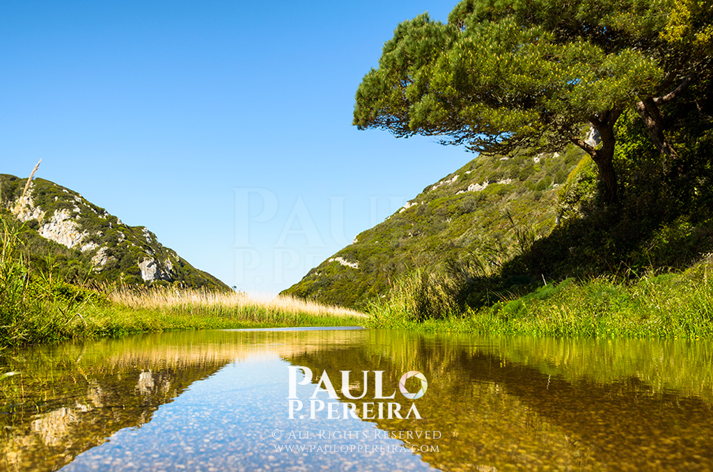 Reflections – Rio Alcabrichel